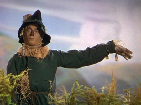 Scarecrow-Wizard Of Oz - Movies