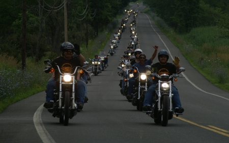 column of bikers - motorcycles, harley davidson, cool, fun