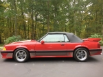 1989 Ford Saleen Mustang Convertible 5.0 V8 5-Speed