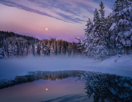 Forest Lake Reflections in Winter at Dusk - Sky, Forests, Lakes, Reflections, Dusk, Nature, Winter, Trees, Twilight, Snow