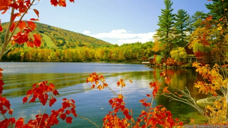 Autumn Lake - autumn, nature, trees, lake