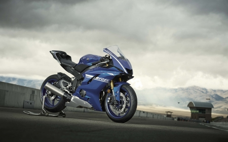 Yamaha R6 - blue bikes, vehicles, motorcycles, yamaha, Yamaha R6, blue