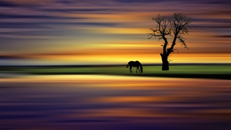 Horse grazing at sunrise - grass, beautiful, sunset, clouds, nice, river, sunrise, scenery, sunbeam, amazing, colors, sky, horse, lake, tree, water, cool, awesome, sunshine, scene, field, landscape