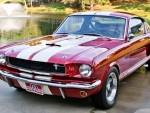 1966 Shelby Mustang GT350 2-Door Fastback 289ci V8 4-Speed