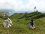 An Ivatan conversing with the cattle in the Batanes!