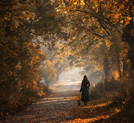 autumn walk - autumn, photography, people, nature, forests