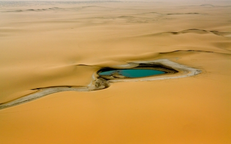 Oasis - amazing, desert, land, nature