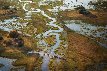 Africa's Okavango Delta - Africa, Elephants, Rivers, Nature, Deltas, Wildlife, Deserts