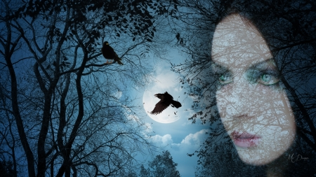 Woman with Ravens - forest, woods, woman, ravens, goth, shdows, spooky, gothic, full moon, Halloween, blue eyes, Firefox Persona theme