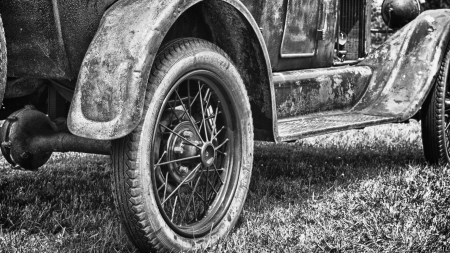 wheel - black, wheel, field, car