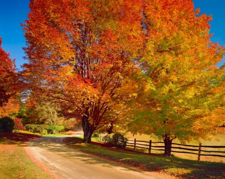 Autumn In New England Other Nature Background Wallpapers On Desktop Nexus Image 2321093