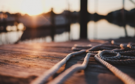 Ropes - photography, macro, nature, ropes, landscape