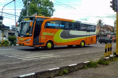 patas indonesia - bus, indonesia, street, patas