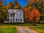 House and Autumn Trees