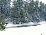 Winter At Eels Creek