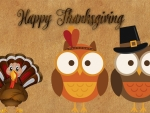 Thanksgiving Owls & Turkey