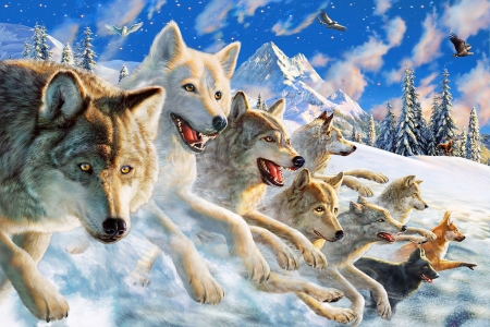 Wolfpack Other Abstract Background Wallpapers On Desktop Nexus Image 2323529