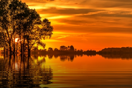 golden sunset - beauty, sun, photography, sky, gold, trees, nature, sunsets