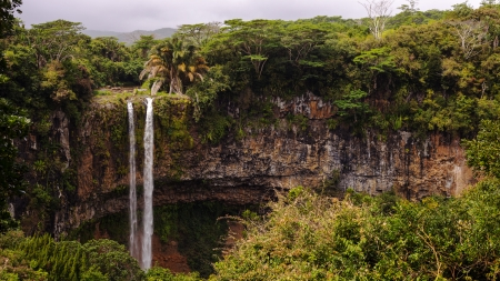 Inpenetrable - Trees, Jungles, Nature, Cliffs, Waterfalls, Islands