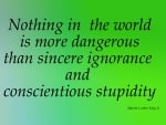 Quotes for Stupidity