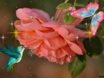 BUTTERFLY WITH HUMMINGBIRD