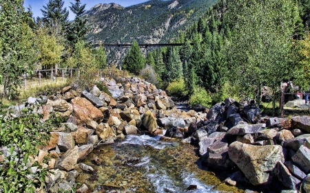 Clear Creek - mountain, forest, cool, Clear Creek, nature, fun