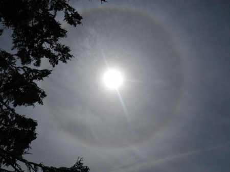 Ring Around the Sun - beauty, sun, show, halo, rainbow, ring, sky show, sun halo, sky, sun ring, nature