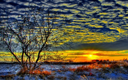 Early Winter Morning - snow, sky, sunrise, clouds, landscaoe