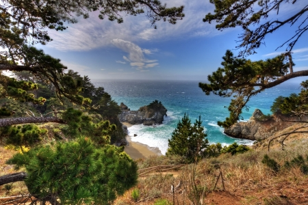 California Coast - Coast, tree, nature, California