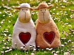 Sheep with ❤