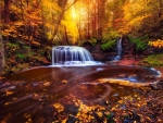 Waterfall in fall forest