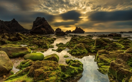 Mossy Seascape in Portugal - Sea, Europe, Clouds, Oceans, Moss, Rocks, Dusk, Nature