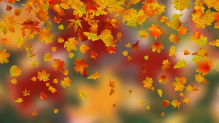 Falling Leaves 3d And Cg Abstract Background Wallpapers