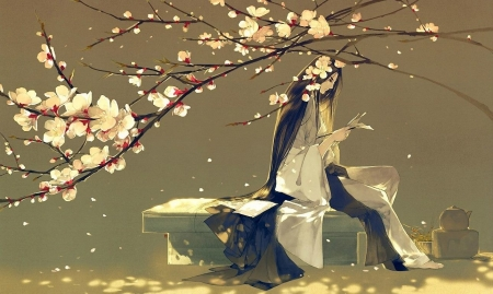 The letter - sakura, art, luminos, man, spring, blossom, fantasy, asian, letter