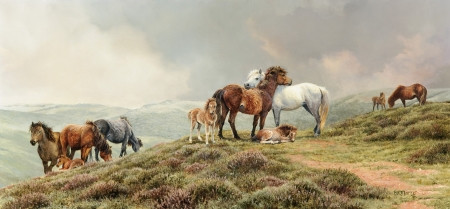 The Dartmoor Ponies - art, painting, bonnie marris, pictura, horse