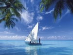 sailboat on the blue sea