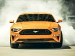 2018 Mustang GT Fastback Burnout