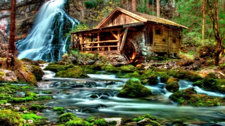 Forest  Watermill