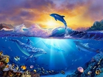 Jewel Sea