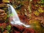 Small forest waterfall in autumn