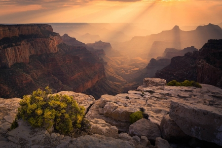 Grand Canyon - fun, desert, cool, Grand Canyon, nature, mountain