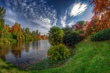 Autumn At The Park - England, bushes, Autumn, park, clouds, Fall, Sheffield Park, Sussex, trees, lake