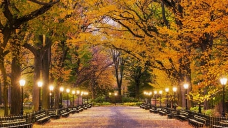 Central Park In Autumn Other Nature Background Wallpapers On