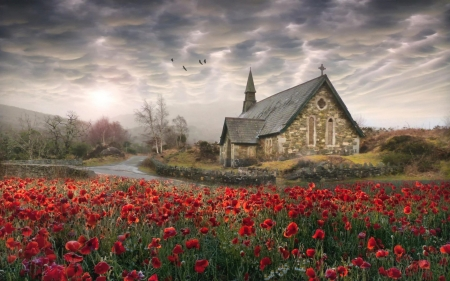 Church House and Poppies - dramatic, house, flowers, clouds, Ireland, pretty, sky, red, nature