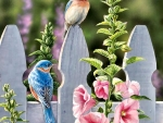 Bluebirds and Hollyhocks C