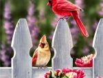 Cardinals and Peonies C