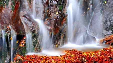 The Fallen Leaves - falls, stream, seasons, italy, leaves, waterfall, mountains, alps, nature