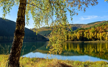 Lake in Autumn - hills, autumn, birch, nature, lake