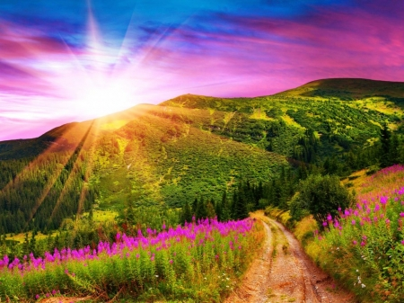 Mountains with Pink Flowers Sunset - valley, purple, rays, sky, sunset, mountains, dazzling, nature, bright