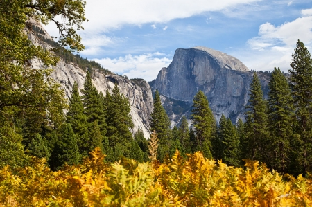 Yosemite Valley - mountain, forest, yosemite, nature, trees, sky, valley